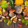 L'autunno in tavola