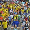 Maremonti Run, 15 km da Piano di Sorrento alle Terme di Stabia