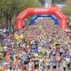 Firenze Marathon, numeri e curiosità