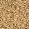 Il miglio: cereale super energetico e antistress