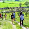 Trail della Masseria Torricella, Prima tappa del Circuito Parks Trail 2017