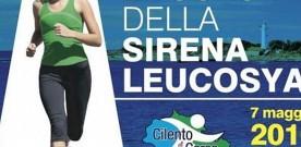 03052016_Locandina-sirena-2016_01