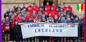 Erco Sport 2014-15